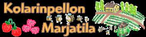 Kolarinpellon_marjatila